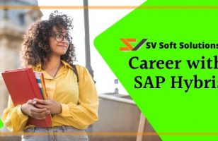 career with sap hybris svsoftsolutions