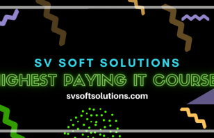 highest paying IT courses sv soft solutions
